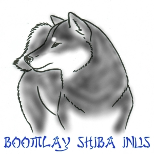 cropped-shiba-outline-2-edited-001blacktan