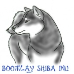 EDITED Shiba Outline 2 - edited-001Black&Tan