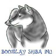 EDITED Shiba Outline 2 - edited-001Black&Tan